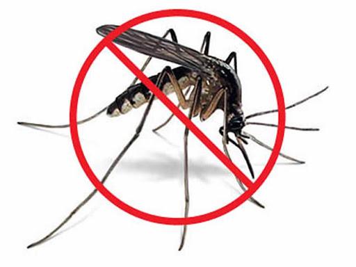 https.sites.google.com.mrmr.biz.georgia.mosquito-control-news